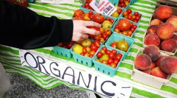 Does Organic Mean Non GMO?